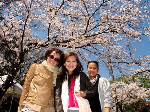 Sakura_sisters